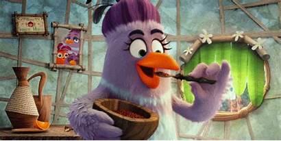 Giphy Angry Birds Taste Feeding Gifs Bird