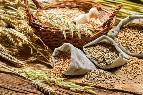 Acido Urico Dieta Alimentare by Dieta Para O 225 Cido 250 Alto