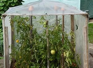Abri A Tomate : comment constuire un abri tomates au jardin ~ Premium-room.com Idées de Décoration