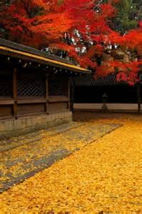 Beautiful Kyoto Japan