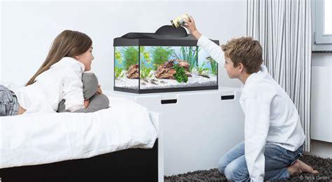 Aquarium Kinderzimmer Ideen by Aquarium Kinderzimmer Ideen Aquarium Im Kinderzimmer