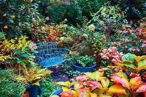 Garten Im Oktober : garten winterfest machen was im herbst pflanzen ~ Lizthompson.info Haus und Dekorationen