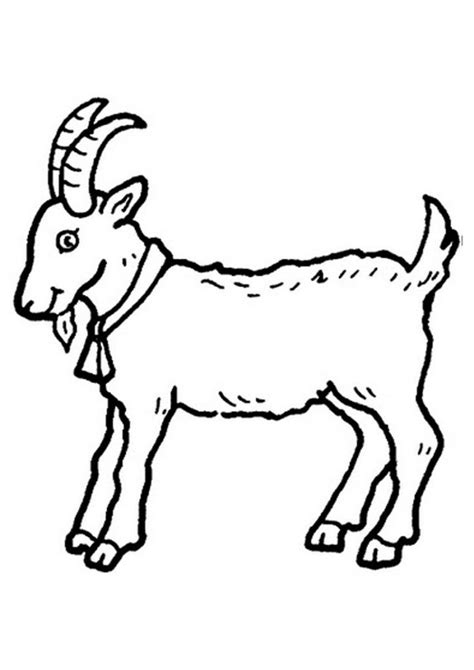 free printable goat coloring pages for kids animal