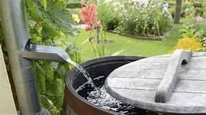 Comment Demineraliser De L Eau : utilisez un collecteur d 39 eau de pluie pour r cup rer de l 39 eau gratuitement ~ Medecine-chirurgie-esthetiques.com Avis de Voitures