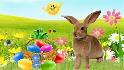Easter Desktop Happy Egg Hunt Timeline Rabbit
