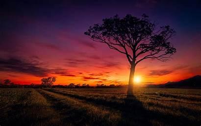 Scenery Sunset Wallpapers 2560 1600 Retina Resolutions