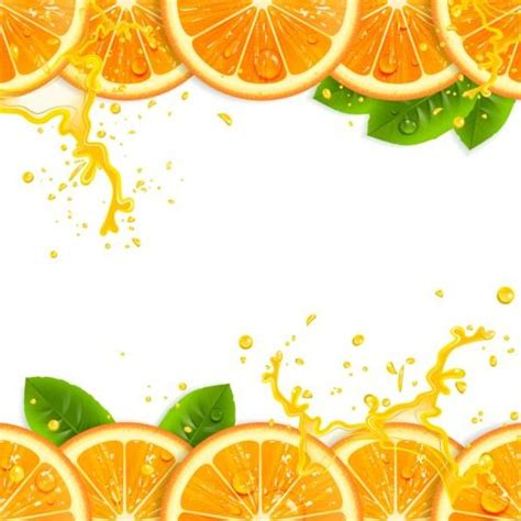 fresh orange  juice background vector