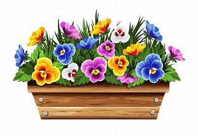 Clipart Window Boxes Plants Flower Potted Planter