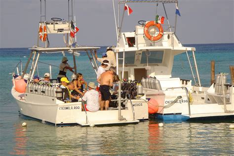 dressel divers cozumel dive trip reviews  special