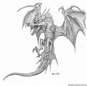 Drachen Schwarz Weiß : illustration drache wyvern ~ Orissabook.com Haus und Dekorationen