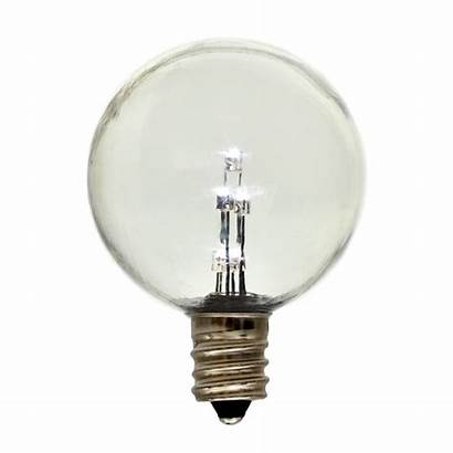 Led Bulb Transparent Background Garden Plastic Globe