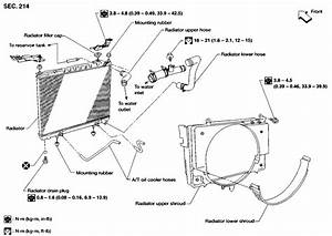 01 Nissan Frontier Transmission Diagrams  01  Free Engine Image For User Manual Download