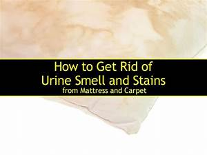 how to get urine stains out of a mattress how to get rid With how to get pee smell out of bathroom