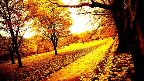 Autumn Wallpapers Widescreen by Autumn Wallpapers Widescreen 71 Background Pictures