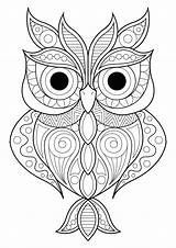 Owl Patterns Coloring Owls Simple Various Different Adult Animals sketch template
