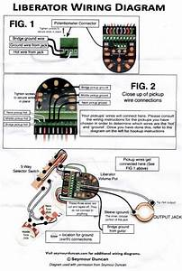 Liberator Volume Pot Wiring Diagram
