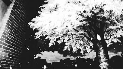 Falling Snow Gifs Sakura Tree Jeux Monday