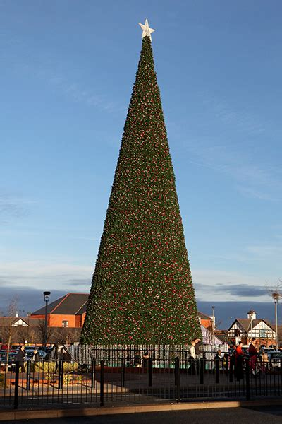 christmas tree cheshire oaks designer outlet thomasons