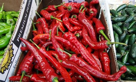 benefits of having hot peppers food research archives page 6 of 8 foodtribute