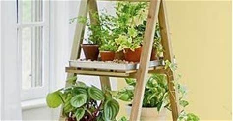 model rak tanaman hias tips inspirasi