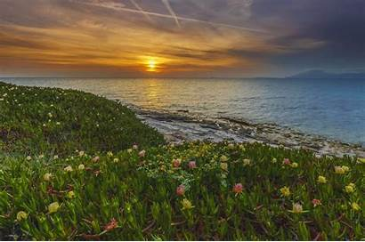 Greece Sunset Flowers Sea Nature Island Sunrise