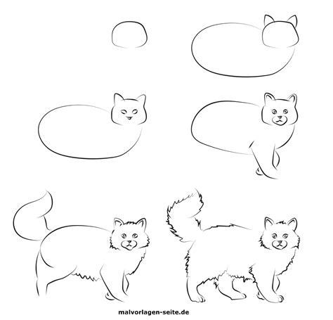 wie malt man eine katze