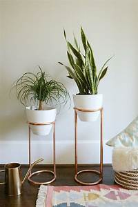 Cool, Plant, Stand, Design, Ideas, For, Indoor, Houseplant, 60