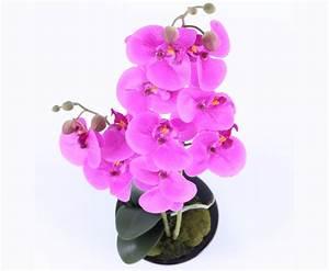 Künstliche Orchideen Im Topf : violett farbige orchideen kunstblumen im topf online kaufen ~ Watch28wear.com Haus und Dekorationen
