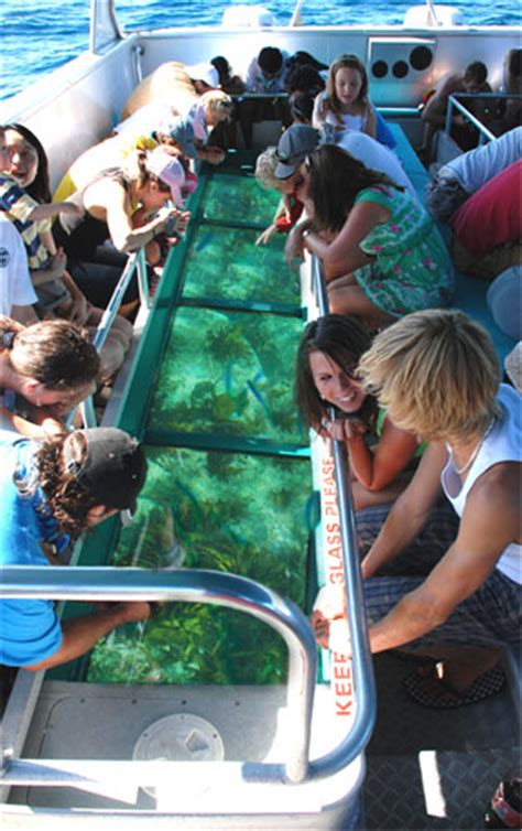 Glass Bottom Boat Tours Leigh by Glass Bottom Boat Goat Island Escape To Leigh