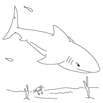 step  step    draw  shark kid crafts