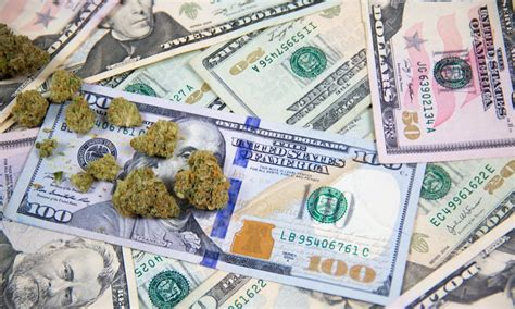 Montana Collects $1.8 Million in Medical Cannabis Tax ...