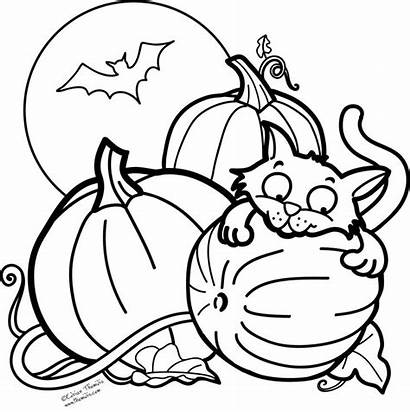 Coloring Pages Halloween Fall Kyle Busch Printable