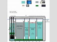 FAQs on Freshwater Aquarium Filtration 2