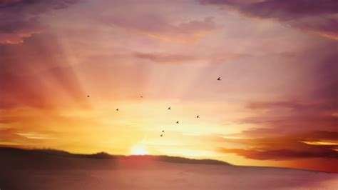Sunrise moving clouds and flying birds Video Background