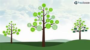Tree Diagram  U2013 Prezi Presentation Template
