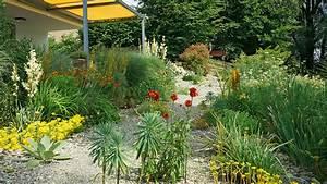 Steingarten Mit Gräsern : reichtum im steingarten schweizer garten ~ Sanjose-hotels-ca.com Haus und Dekorationen