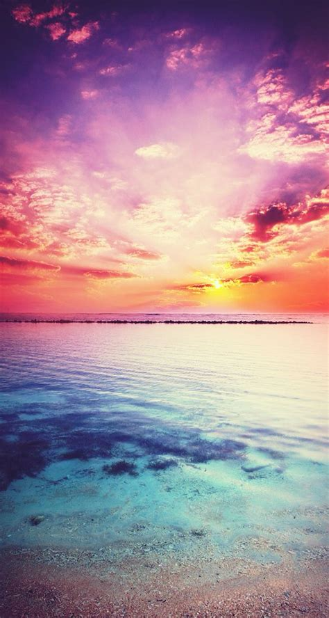 sunset background backgrounds