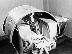 nine more heroes of human space flight
