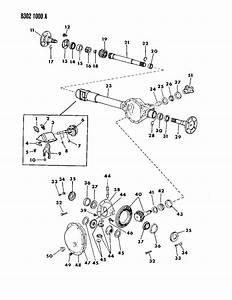 1992 Jeep Wrangler Bearing  Drive Sprocket  Output Shaft  Synchronized