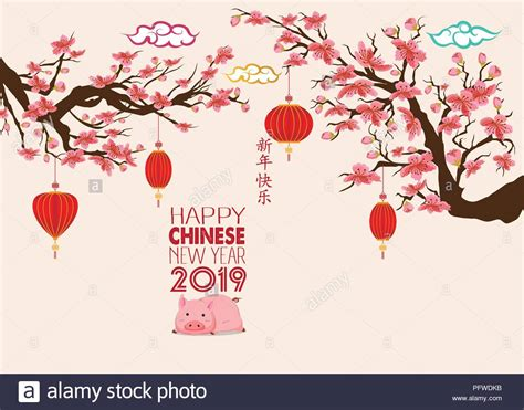 Happy Chinese New Year 2019, Jahr Des Schweins Mit Cute