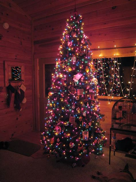 madcitymike s blog quot the fully decorated christmas tree quot