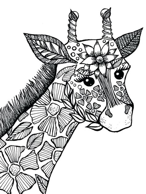 animal coloring pages  coloring pages  kids
