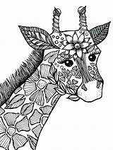 Coloring Animal Pages Giraffe Zen sketch template