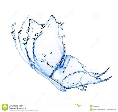 water butterfly royalty free stock photos image 25096108