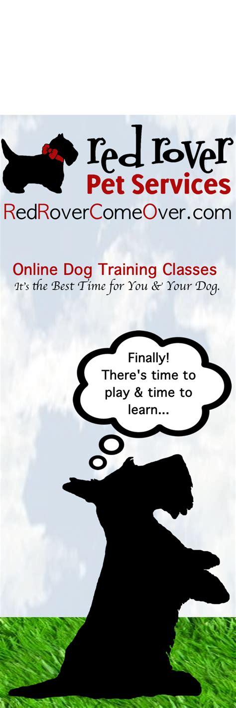 bookmark celebrating    dog training classes
