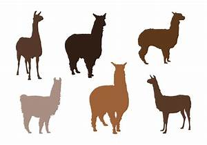 Alpaca Vector Silhouettes - Download Free Vector Art ...