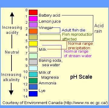 Mr Bontront's Grade 12 Chemistry Wiki  Acids, Bases, And