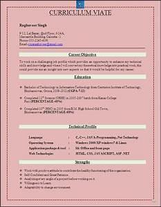 RESUME BLOG CO Best Resume Format for B Tech IT Freshers