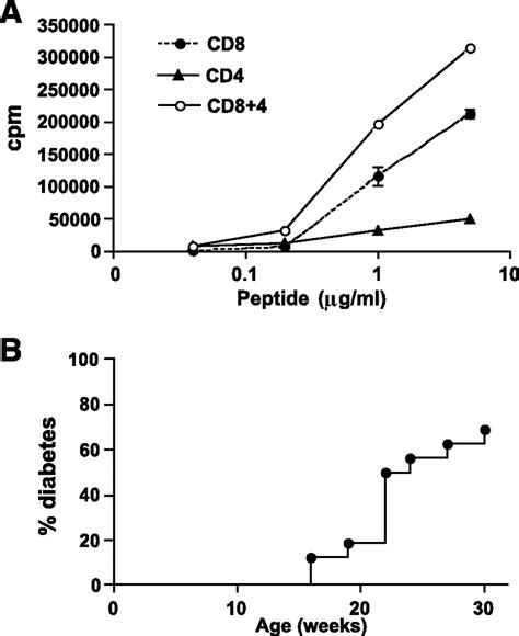 activation  insulin reactive cd  cells  development