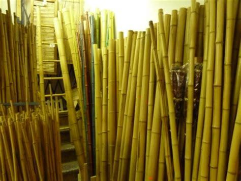 gros bambou deco exterieur